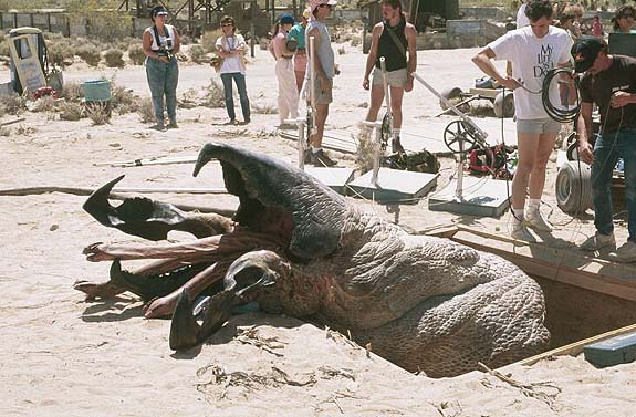 Articulated Graboid On Set
