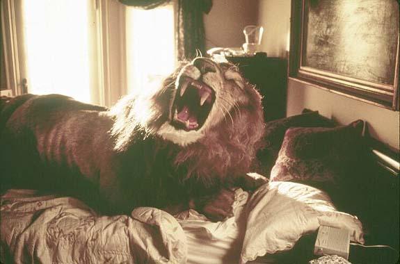 Lion From Jumanji